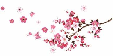 Sakura no Hanabiratachi ความทรงจำและการอำลา
